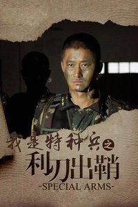 我是特种兵之利刃出鞘 DVD版海报