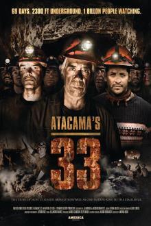 33名矿工海报