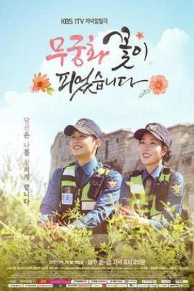 木槿花绽放了海报