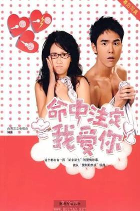 爱上琉璃苣女孩海报