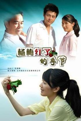 杨梅红了的季节海报