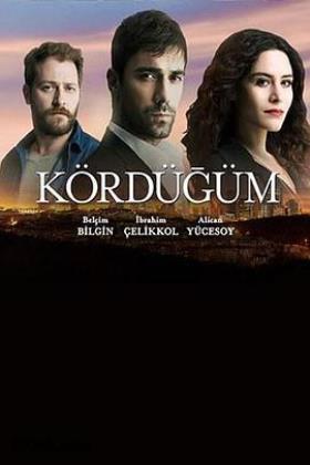 爱情交叉点土耳其版在线观看