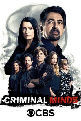 犯罪心理第十二季在线观看