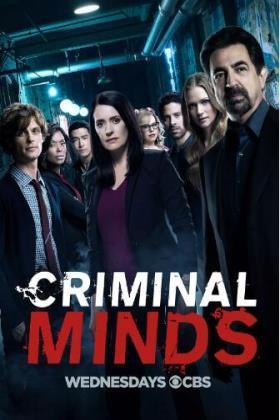 犯罪心理第十三季在线观看