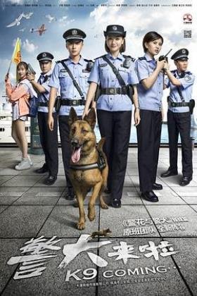 警犬来啦海报