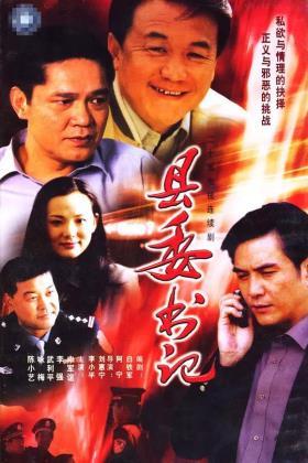 县委书记海报