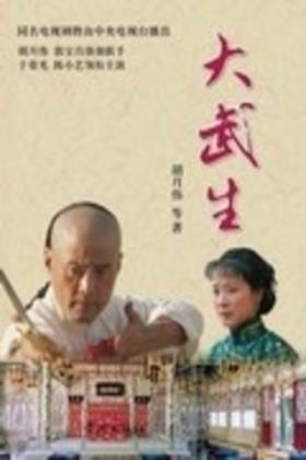 大武生电视剧海报