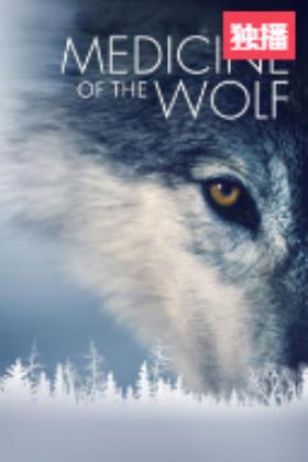 狼 人类的解药海报