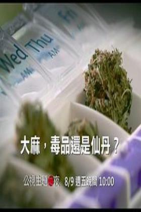 大麻:毒品还是仙丹海报