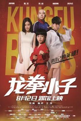 龙拳小子2016海报