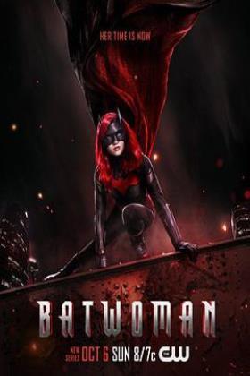 蝙蝠女侠海报