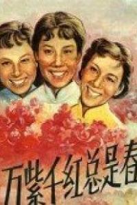 万紫千红总是春海报
