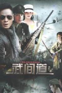 终极征服海报