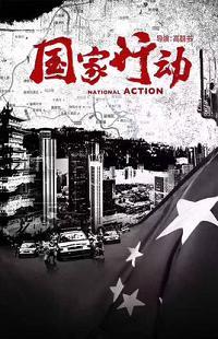 国家行动(2017版)