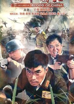 血战丛林海报
