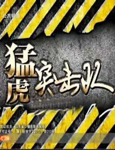 猛虎突击队刘佩琦版海报