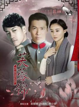 芙蓉锦海报