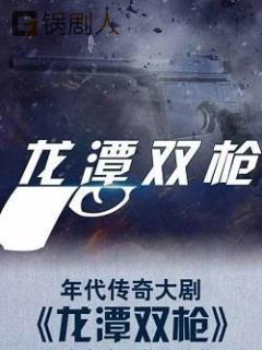 龙潭双枪电视剧