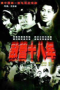 敌营十八年1981版