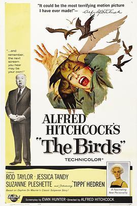 群鸟1963