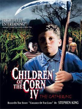 玉米地男孩4