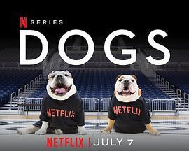 爱犬情深第二季
