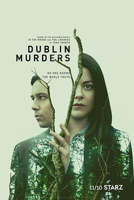 都柏林凶案第一季