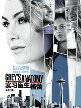 实习医生格蕾第十四季