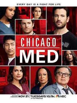 芝加哥医院第三季