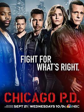 芝加哥警署第四季