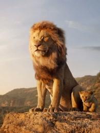 狮子王国第2季