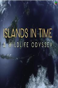 野性热带岛