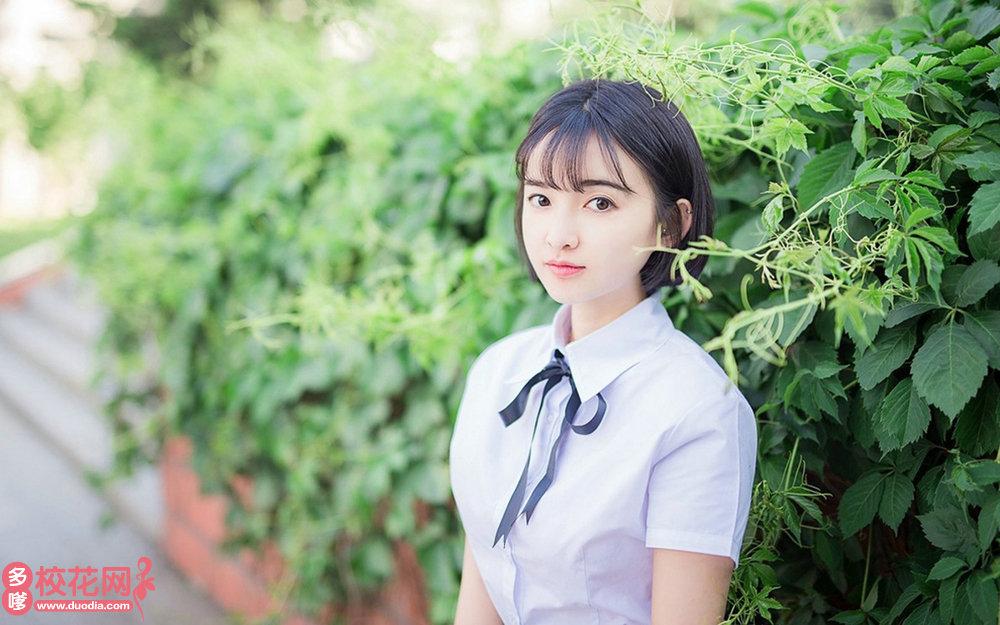 山东畜牧兽医职业学院美女校花纪子燕摄影图片