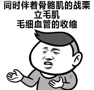 张学友微信表情带字:毛心血管收缩