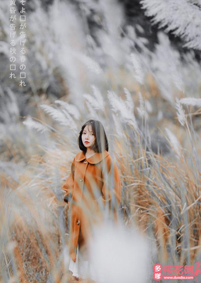 广西南宁市第三中学校花刘小琼