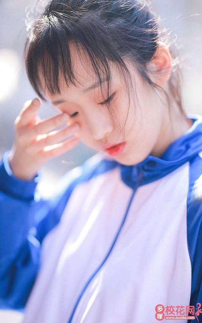 莘县实验高级中学校花纪瑾菊
