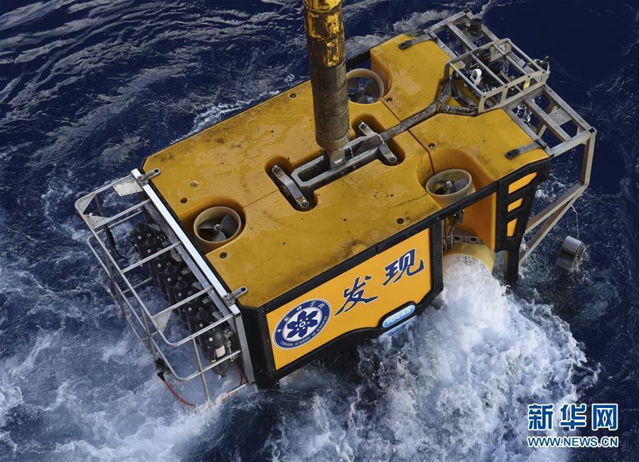 """""""科学""""号在西太平洋采集到稀有深水海兔"""