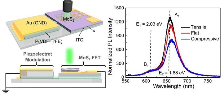 科学家实现压电晶体管电路静态/动态调控