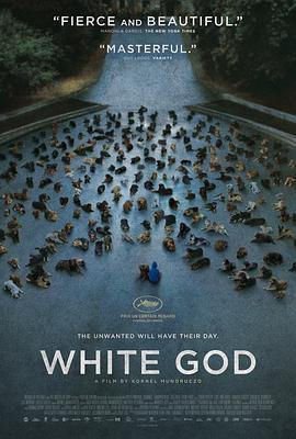 白色上帝的海报