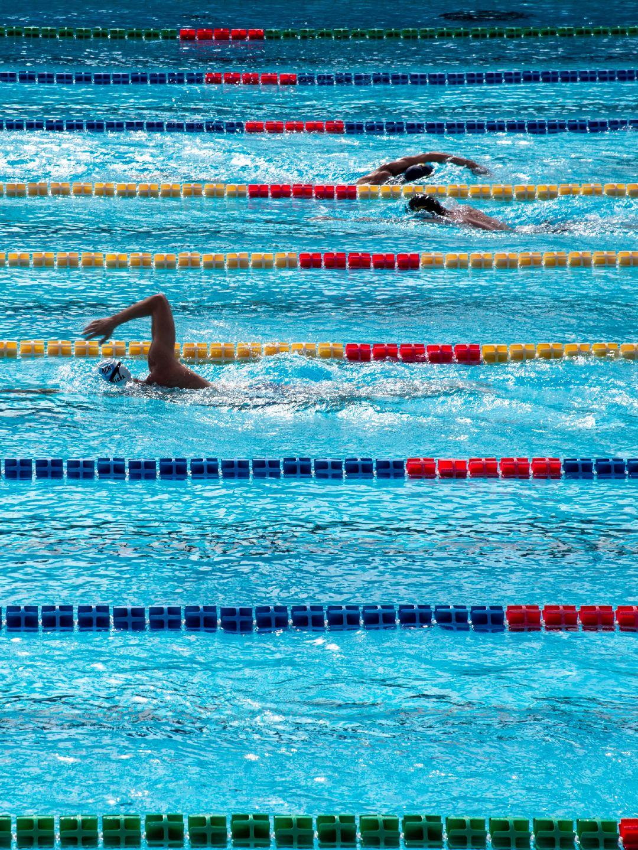 奥体游泳池里奋力游泳的运动员高清摄影图
