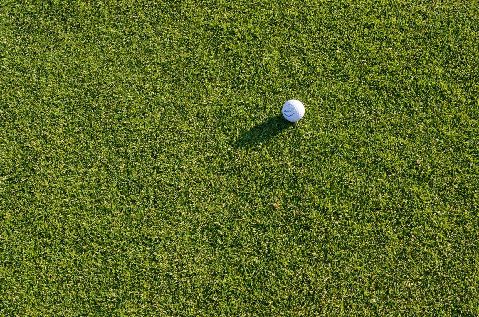 高尔夫场地上白色高尔夫球高清特写图集