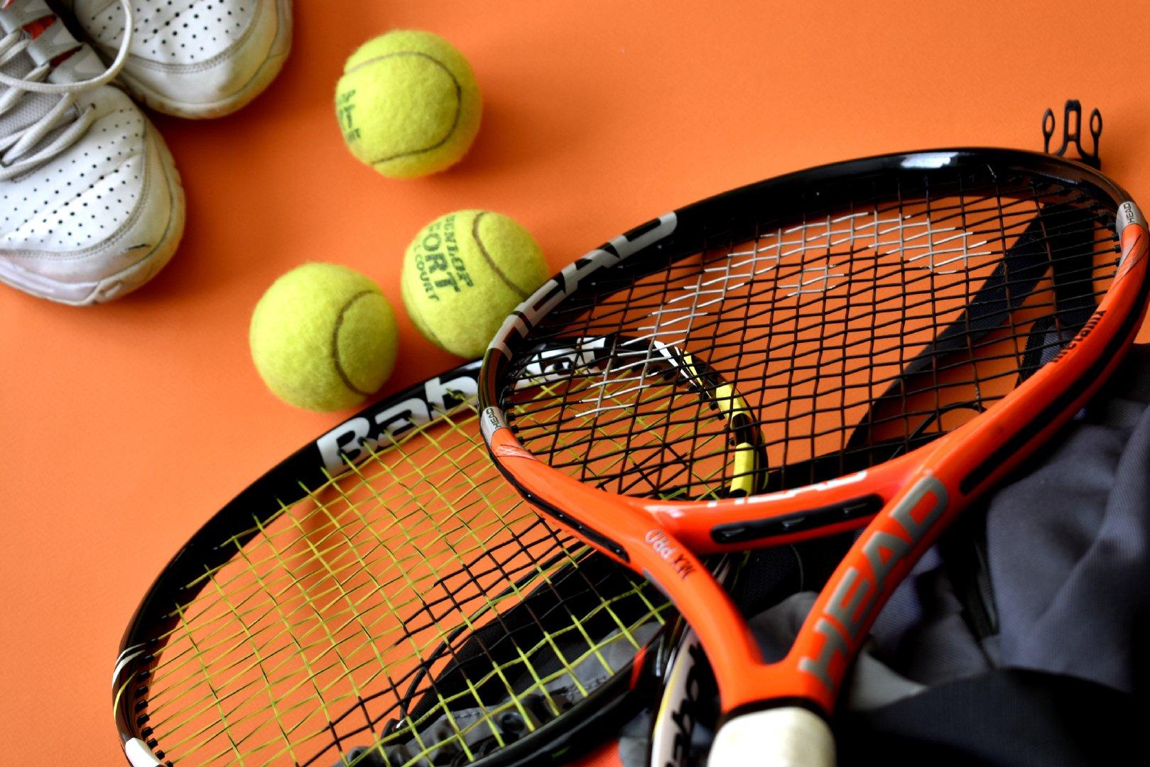 绿色的毛茸茸的网球高清图集