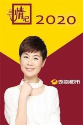 寻情记2020海报