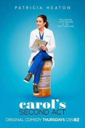 转职卡罗尔第一季海报