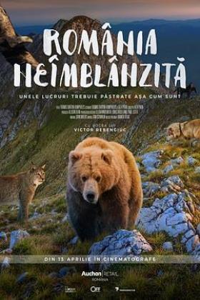 野性的罗马尼亚海报