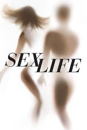 性生活第一季海报