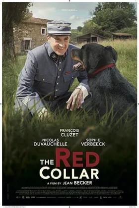 红项圈海报