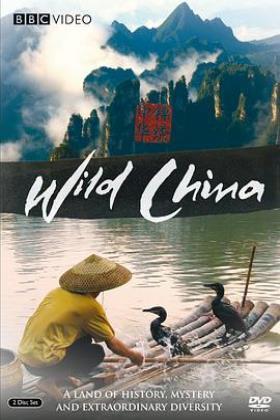 美丽中国海报
