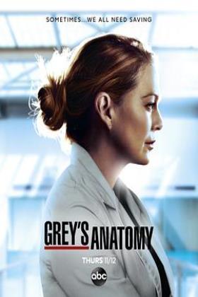 实习医生格蕾第十七季海报