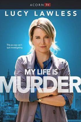 侦探人生第一季海报